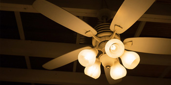 t6 led bulb