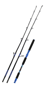 Saltwater Fishing Rod Carbon Fiber Jigging Rod with 2 Piece Twin-Tip Spinning & Casting Rod