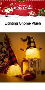 Christmas Gnome Decorations