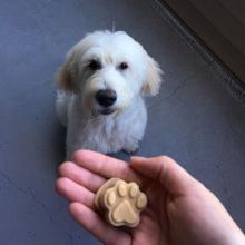 dog peanut butter, silicone dog molds, peanut butter treats, frozen dog treats, kong filler,