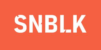 SNBLK iphone 12 pro case