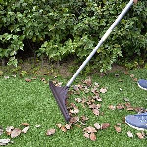leaf remove