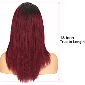 Ombre human hair wig