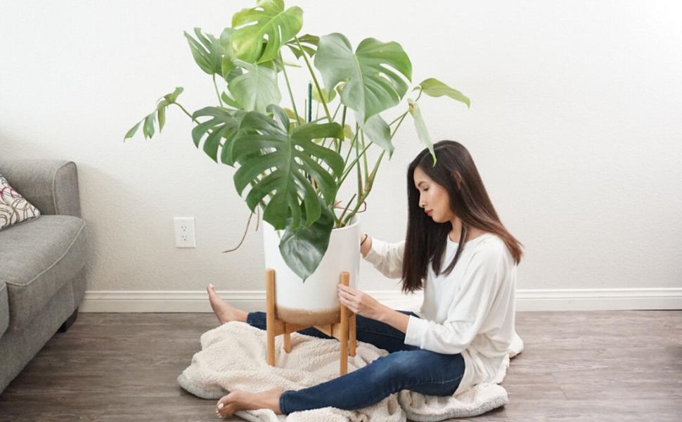 plant stand indoor outdoor plant stands