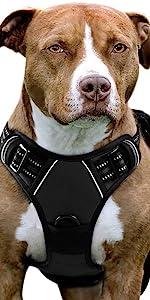 No Pull Dog Harness-Black