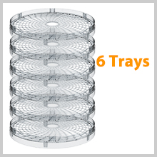 6 trays dryer