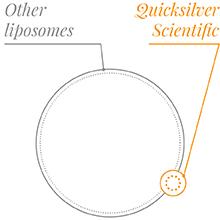Smaller liposomes