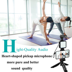 iphone microphone for video recording