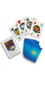 math cards spartan series homeschool education fun indoor activity parenting montessori games create