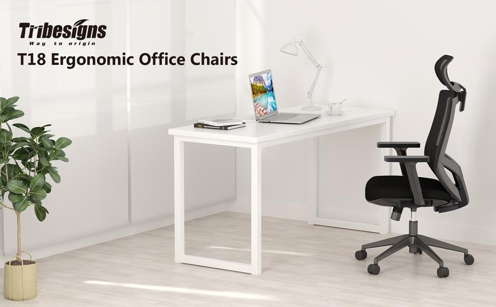 ergonomics office chair