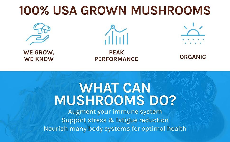 100% USA grown mushrooms