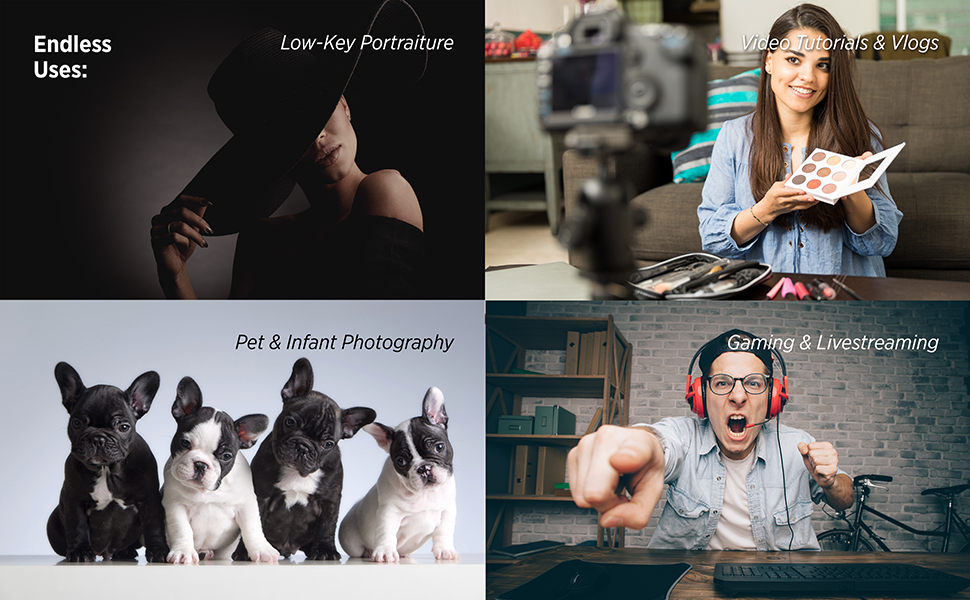 Gaming Live streaming, pet photography, portrait and product photography