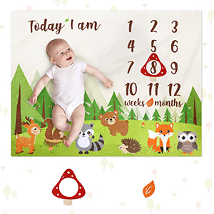 Personalized Blanket Woodland Baby Shower Gift Monthly Age Blanket Photo Book Prop Baby Age Blanket Fox Milestone Blanket