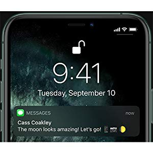 Apple iPhone 11 Pro with FaceTime - Midnight Green
