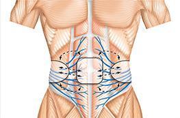 2.広範囲の筋肉に働きかける「C.S.I]