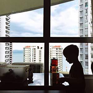 Window Play