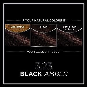 Garnier Olia Tinte para el cabello negro permanente, hasta ...