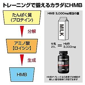 1000_hmb_statement3