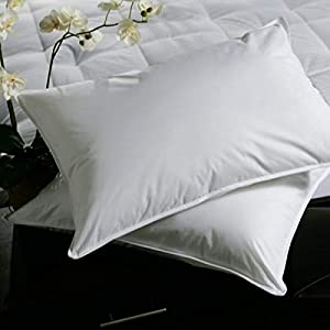 iBed home White Microfiber 2 Pieces Pillow Se