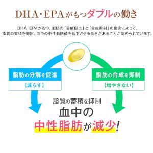 dha04