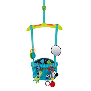 Bright Starts 10410 Bounce and Spring Deluxe Door Jumper