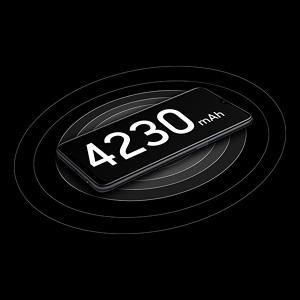 4230mAh Battery