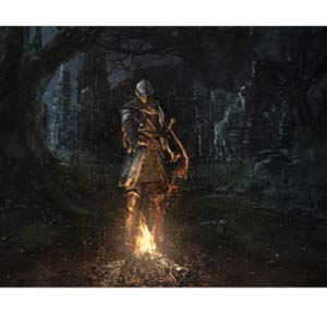 Amazon.com: Dark Souls: Remastered (Nintendo Switch): Video Games