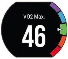 最大酸素摂取量(VO2Max)