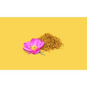 Beesline Whitening Roll-On Deodorant - Beauty Pearl
