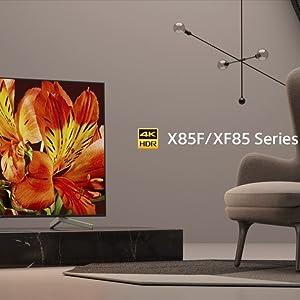 Sony KD-55XF8096 - Televisor 55