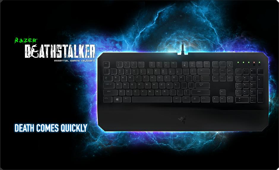 b4a6092b04e Razer DeathStalker Essential Gaming Keyboard: Amazon.ca: Computers ...