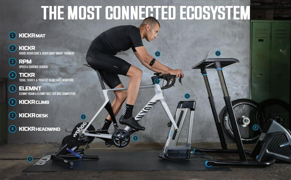 The most connected ecosystem.