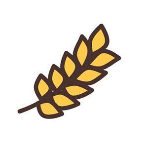 oat kernel image