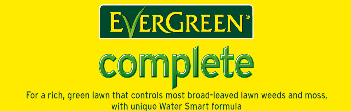 evergreen weed and feed instructions