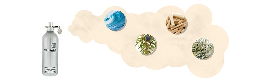 Sandflowers by Montale for Unisex - Eau de Parfum