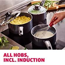 all hobs induction