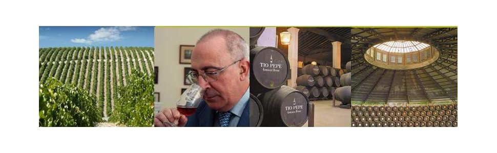 Noé Pedro Ximénez muy viejo - Vino D.O. Jerez - 750 ml: Amazon.es ...
