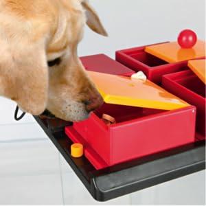 trixie-gioco-interat-poker-box-1-tx32012