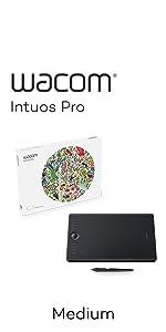 ワコム Wacom Intuos Pro Mサイズ ペンタブレット 2017年 ペン入力 板タブ Wacom Pro Pen 2 付属 Windows Mac 対応 PTH-660/K0