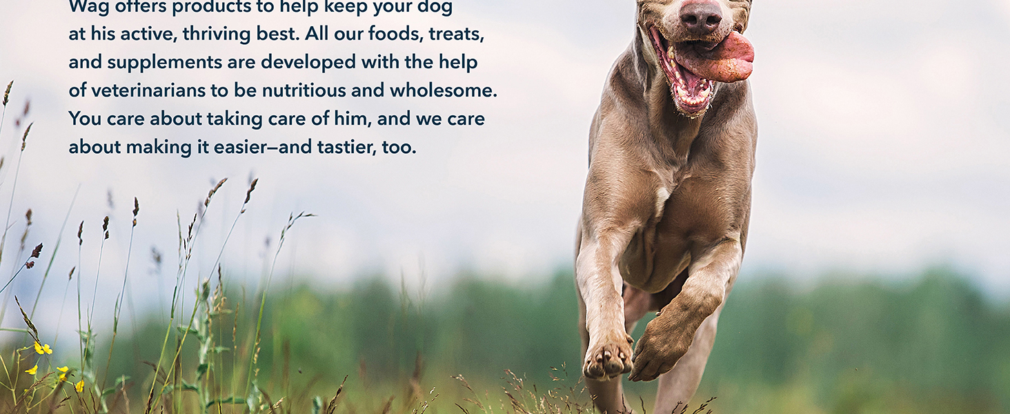 dog food ingredients, quality dog food, beef for dogs, feeding dog