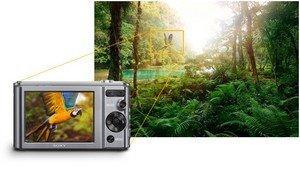 Sony Cybershot DSC-W810 Digital Camera