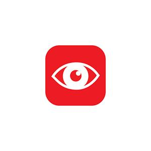 Orchard Toys Observational Skills Icon