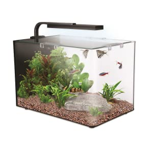 Kit de acuario completo Interpet Nano LED