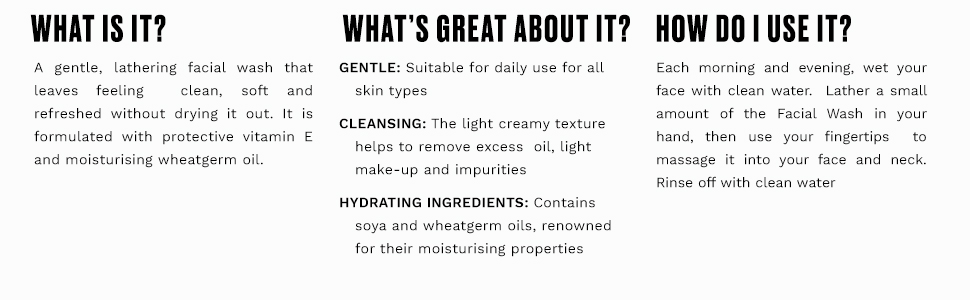 The Body Shop Vitamin E Facial Wash