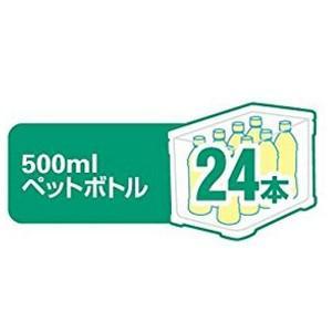 500mlペットボトル(約24本)イメージ