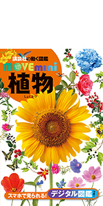 mini_plant