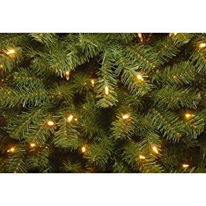 Amazon.com: National Tree 7.5 Foot North Valley Spruce Tree with ...