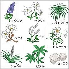 9種類の生薬『辛夷清肺湯(シンイセイハイトウ)』が、膿(うみ)を抑える