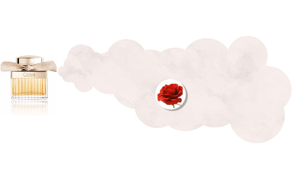 Chloe For Women - Eau de Parfum, 75ml