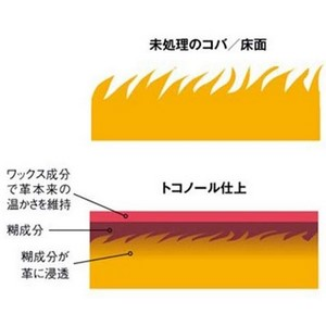SEIWA トコノール レザークラフト用 床面・コバ仕上剤 120g 無色 SWA31505